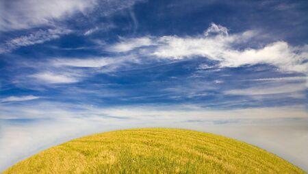 Field in a beautiful sunny day- Alentejo - Portugal Stock Photo - 6718021