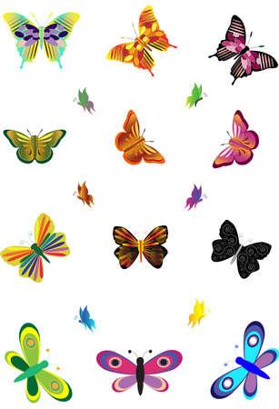 butterflies. Stock Vector - 14604608