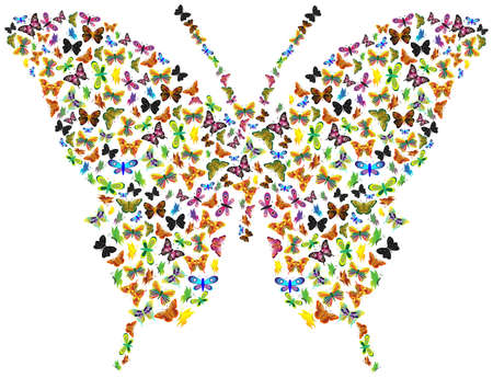 Butterfly of butterflies Stock Vector - 14712833