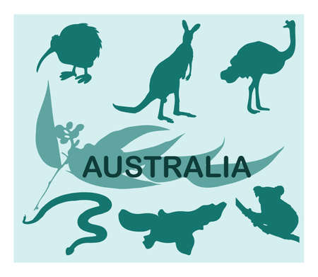 australia animal: Animal silhouettes - Australia Illustration