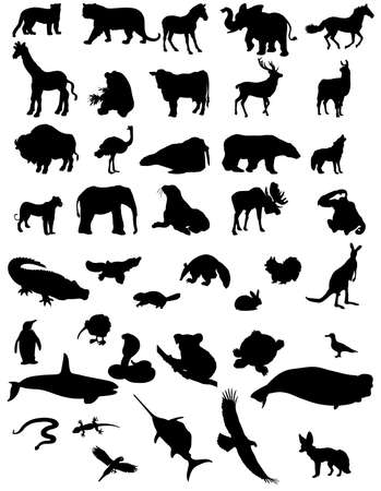 animal silhouettes - black and white Illustration