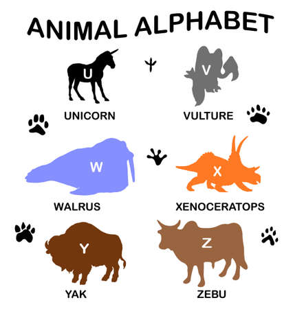 Animal alphabet - letters from U to Z