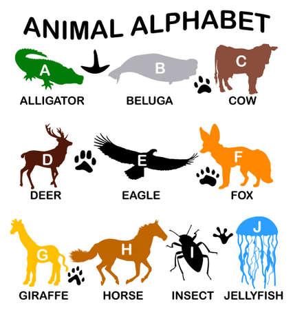Animal alfabeto - letras de la A a la J Foto de archivo - 50041846