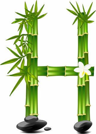 Letter H made of bamboo tree Vectores