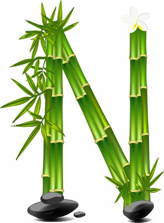 Letter N made of bamboo tree