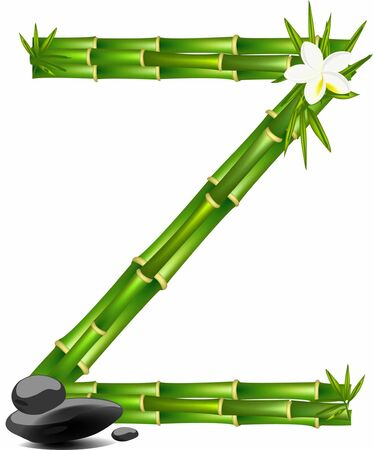 Letter Z made of bamboo tree