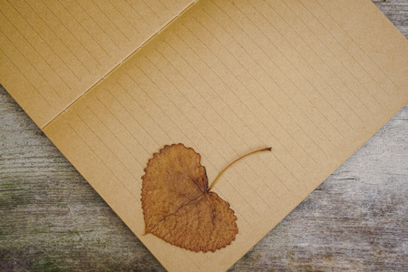 Kraft paper with dried leaf on top, lying on wooden table surface. With copy space to celebrate event or occasion.