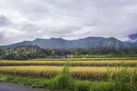 Typical Balinese landscape with traditional houses, banana trees, rice fields and Bukit Nampo hill in Karangasem. Stockfoto