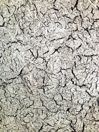 adobe wall: Grigio muro di adobe