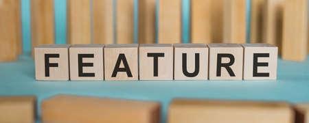 FEATURE word written on wooden blocks on light blue background.