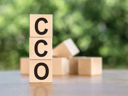 sign cco Chief Commercial Officer build from wooden blocks