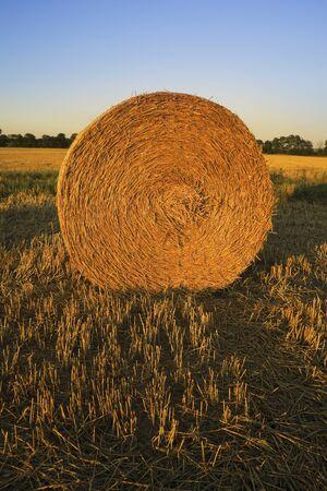 Bale of straw on field photo
