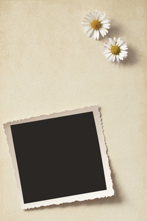 Daisies and old photo on vintage background photo