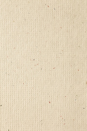 plain paper: High resolution natural colored recycled paper