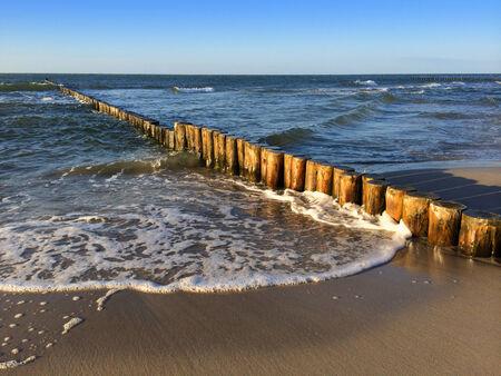 groynes: Wooden groynes at the beach of german baltic sea