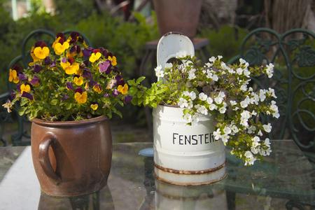 стиль жизни: Декоративные горшки для растений на садовом столе; Деревенский металлический контейнер с немецким текстом Fenstereimer означает оконный ковш Фото со стока