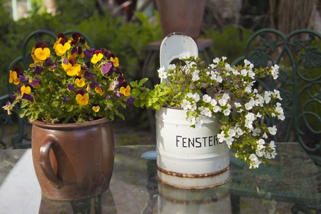 Decorative plant pots on a garden table; the rustic metal container with German text Fenstereimer means Window bucket
