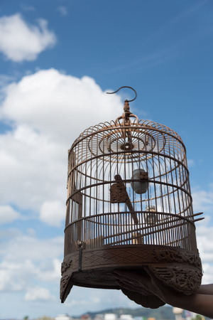Beautiful birdcage with blue sky as background