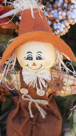 Cute scarecrow doll with large orange hat smiling