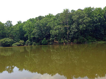 The calm waters of Callaway Gardens