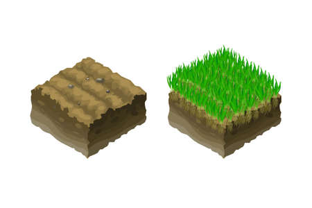 green little planet earth: A piece of land, isometric projection, section of soil with green young grass seedlings. Illustration in vector.