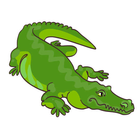 reptiles: Vector illustration of green crocodile in cartoon style. Crocodilia, the detachment of aquatic vertebrates, which are usually referred to as the modular group of reptiles. Illustration