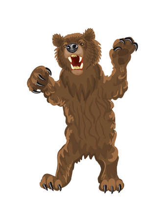 snarling: Brown bear stands on its hind legs. Bear with open mouth, fangs and large claws. Snarling, aggressive grizzly bear illustration on a white background.