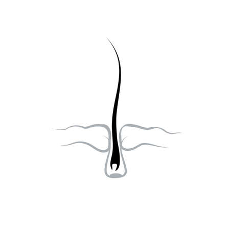 baldness: Food roots human hair, stimulating growth in hair loss. Hair bulb the structure of the icon symbol.