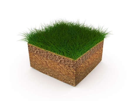 The ground or soil in an isometric sectional view - shows the growth of lawn grass