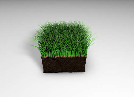 3D rendering, lawn grass 3D illustration, turf athletic fields, landscaping and advertising, seeding. 3D image.