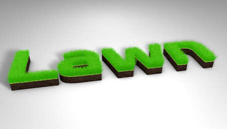 3D illustration, turf athletic fields, landscaping and advertising, seeding. 3D image Stock Photo