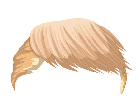 Hair Donald Trump. Leader of USA. Can use for caricatures and cartoon character. Vector illustration.