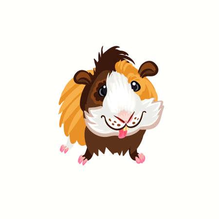Guinea pig tricolor happy brown clipart illustration vector Illustration