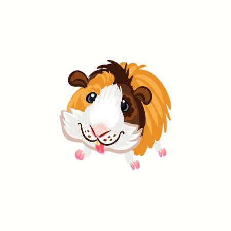 Guinea pig tricolor happy brown clipart illustration vector Stock Illustratie