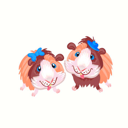 funny cartoon funny Guinea pigs clipart illustration vector