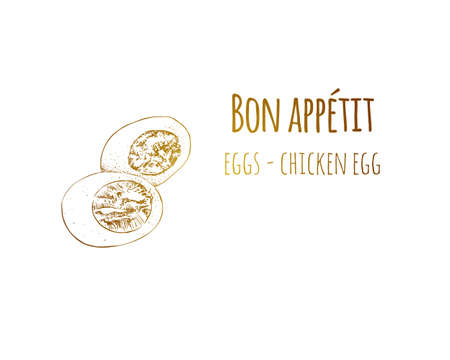 Hand drawn sketch vintage egg. Food sketch and kitchen doodle. Can use for cafe and restaurant menu design.