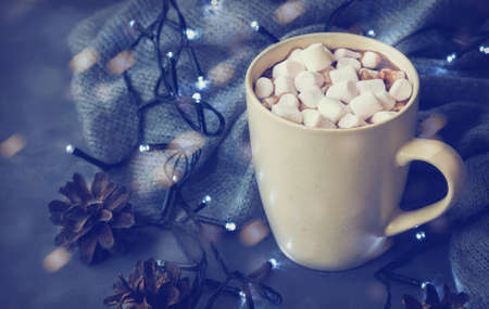 Hot winter drink with cocoa and marshmallows in mug Фото со стока