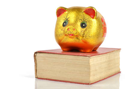 Piggy bank and book photo