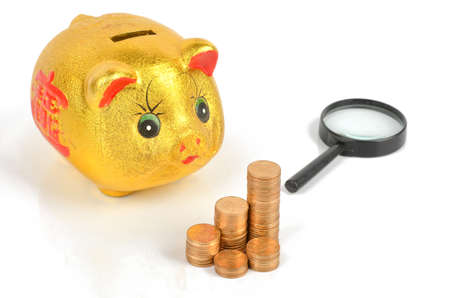 Magnifier and piggy bank with coins Stock Photo - 12067789