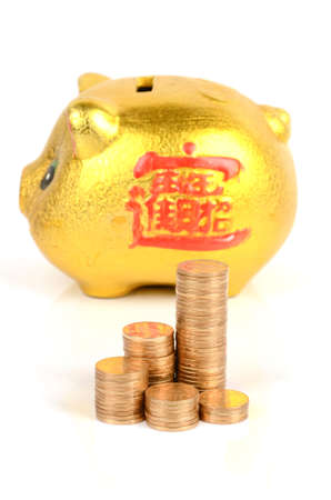 Piggy bank and coins Stock Photo - 12178017