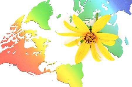 Jerusalem artichoke flowers and world map Stock Photo - 12237430