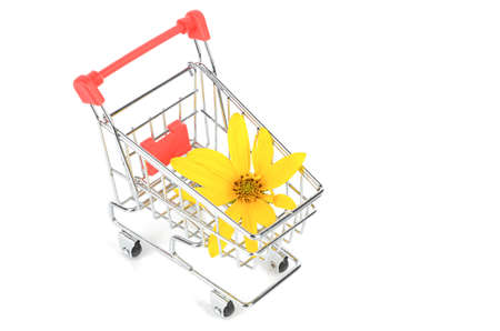 Jerusalem artichoke flower and shopping cart photo