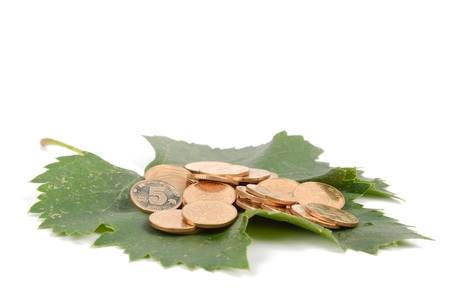 Plane tree leaf and coins photo