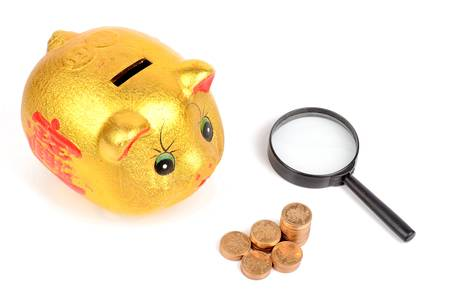 Magnifier and piggy bank with coins photo