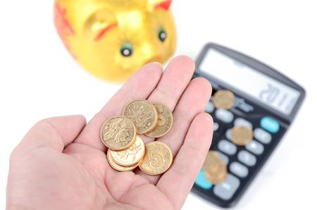 Piggy bank and calculator Stock Photo - 12874753