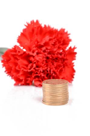 Red carnation and coins photo