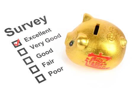 Piggy bank and survey photo