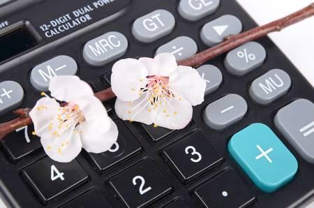 Calcultor and peach blossom Stock Photo - 13026830