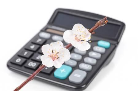 Calcultor and peach blossom photo