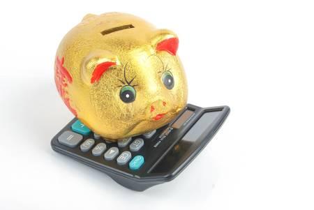 Piggy bank and calculator photo
